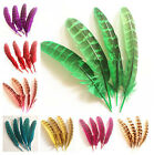 Beautiful 10-100 hen feathers 10-15 cm / 4-6 inches
