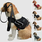 Dog Control Vest Harness No Pull Heavy Duty Training Working Free Shipping