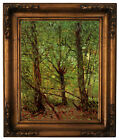 van Gogh Trees and Undergrowth Wood Framed Canvas Print Repro 11x14