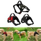 Pet Dog Soft Adjustable Vest Harness Breathable Walking Collar Strap Dog Supply