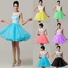UK 6-20 Formal Lace Wedding Party Prom Bridesmaid Evening Cocktail Mini Dress
