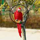 Simulation Parrot Bird Sculpture Wall Hanging Macaw Resin Crafts Handmade