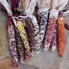 Autumn Explosion Indian Ornamental Corn Hybrid F1 Seeds - Beautiful!!!!
