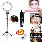 19'' 65W  Dimmable Ring Light Lamp w/ Diffuser + 6' / 185cm Light Stand Kit US