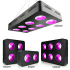 500W 1000W 1500W 2000W Dimmable Hydro LED Grow Light Full Spectrum Indoor Plants