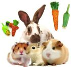 Sisal Carrot Corn Throw Gnaw Nibble Chew Treat Toy Hamsters Guinea Pigs Rabbits