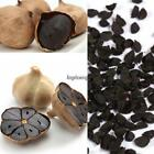 Black Garlic Seeds Pure Natural And Organic Vegetable Seeds Healthy AGSG