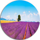 Intentions Art 'Remote House and Tree in Lavender Field' Photographic Print on Metal