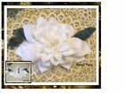 Elegant HAIR ACCESSORIES for Bridal, Holiday, or Everyday wear in Wedding WHITE