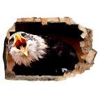 Wall Stickers Eagle Bird Deathers Mouth  Bedroom Girls Boys Living Room F872