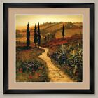 35W*x35H* DOWN THE LANE by STEVE THOMS - BICYCLE - DOUBLE MATTE, GLASS and FRAME