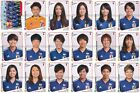Women's World Cup France 2019 Panini - Choose From All Teams -