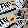 More images of E285 37 / 49 / 61 / 88 Keys Piano Stickers Creative Electronic Organ Music