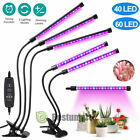 LED Grow Light Plant Growing Lamp Lights with Clip for Indoor Plants Hydroponics