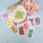 10g Fruit slice clay sprinkles for filler supplies fruit mud decoration for k Nt image