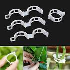 Tomato and Veggie Garden Plant Support Clips For Trellis Twine house Green F9D4