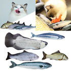 Pet Cat Catnip   Toy Exercise Training Toys for Biting Chewing and Scratching