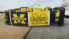 University of Michigan Dog Collar with leash set option, Michigan Wolverines