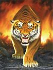 3274 TIGER FROM THE EMBERS FINE WALL ART FANTASY METAL WALL SIGN BRAND NEW