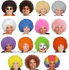 Curly Afro Wig 60s 70s 80s Disco Clown Mens/Ladies Fancy Dress Costume Accessory