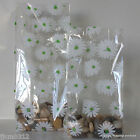 10 Daisies Patterned Cellophane Gift Bags *Choose Size* Easter / Mother's Day