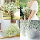Baby's Breath Fake Silk Flower Gypsophila Artificial Plant Home Wedding KZUK