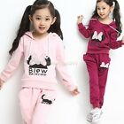 Kids Girls Clothes Sports Outerwear Hoody + Pants Trousers Sz3-9Y Outfits Sets