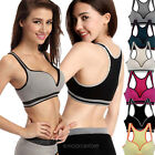 HOT Women Sports Bra Padded Stretch Yoga Workout Fitness Gym Sleeveless 2014 NEW