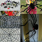 Giant white/Black Chenille SPIDER WEB Haunted House Party Halloween Decoration
