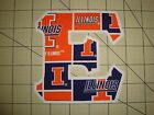 UNIVERSITY OF ILLINOIS 5 INCH GREEK SORORITY/FRATERNITY IRON ON LETTERS