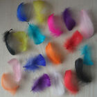 50pcs100pcs High Quality Goose Shoulder Feathers 3-5Inch /7-10cm/10Color Select