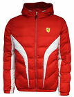 Puma Ferrari SF Padded Puffer Jacket Mens Red (761573 02) R