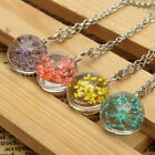 4 Style Real Dried Mixed Color Flower Glass Ball Pendant Silver Plated Necklaces