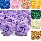 Fashion 50Pc Rose Artificial Silk Flower Heads Wedding Supplies Assorted Colours