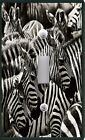 Light Switch Plate & Outlet Covers ZEBRA CAMOUFLAGE PRINT BLACK & WHITE STRIPE