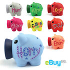 Unusual Name Personalised Piggy Bank / Money Box Gift Christmas Stocking Filler