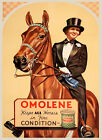 Lady Horse Dressage Eat Omolene for Fine Condition Vintage Poster Repro FREE S/H