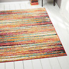 Modern Rug Contemporary Area Rugs Multi Geometric Swirls Lines Abstract Carpet