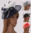 Ladies Women's Elegant Fascinator Hat Veil Hat Feather Mesh Wedding Races 202