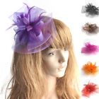 Hot Sale Handmade Women Hair Clip Feather Wedding Casual Fascinator Headpieces