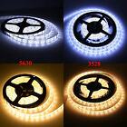 1M-10M 3528 5630 5M 300SMD Cool/Warm White LED Flexible Strip Light Waterproof