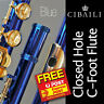 More images of  CIBAILI C Flute • BLUE with GOLD keys •  NEW PERFECT FOR SCHOOL • Free Express