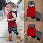 2PCS Toddler Kids Baby Boy Hooded Tops T-shirt Vest +Pants Short Clothes Outfits