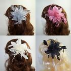 Wedding Day Dotty Flower Fascinator on Clear Comb with Feather detail