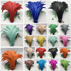 Внешний вид - Wholesale! 10-1000 pcs rooster tail feathers 12-14 inches/30-35cm 15 colors