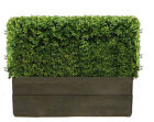 Artificial Buxus Hedge in timber trough