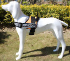 Reflective Dog Harness Adjustable Soft Padded Non Pull Service Dog Harness Vest