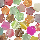 50 Mixed Colour Flower Shell Charm Beads 12mm - Choose From 9 Colours