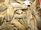 "45 Dried Pumpkin Stems Flat Base YOUR CHOICE Lots 3-4"" Ships Free US"
