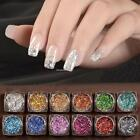 TOP Glitter Dust Powder Sheets Nail Art 3D Manicure Decoration- 12 NAIL 01